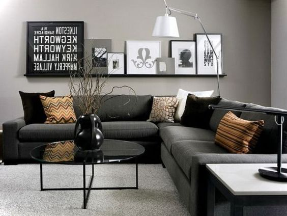 Gray Small Living Room Ideas