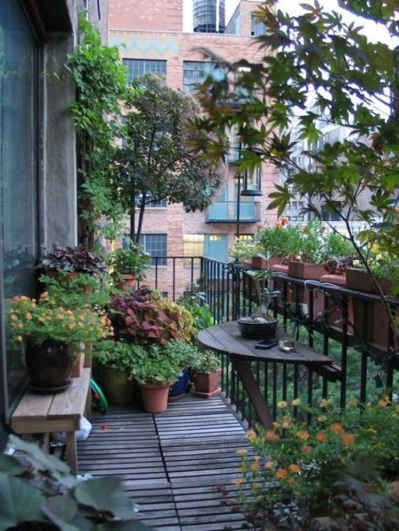 Garden In Balcony