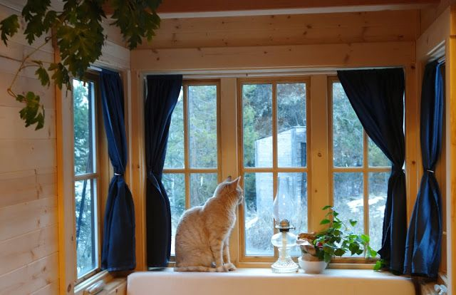 Off-grid Tiny House On Wheels Cat On Windows