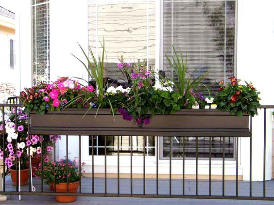 Photo by: Rosanne H. Pictured is the 72 inch Supreme Fiberglass Window Boxes and Railing. Hooks and Lattice Photo Contest 2008.