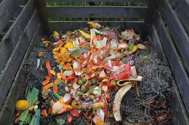 How to Make Your Backyard More Eco-Friendly - Green waste