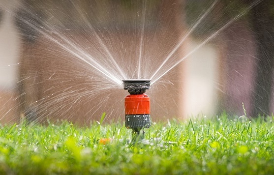 All You Need to Know about a Sprinkler System