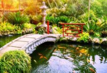 Why Having a Water Feature In Your Backyard Is a Good Decision