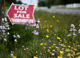 Three Easy Ways to Increase Your Land Value