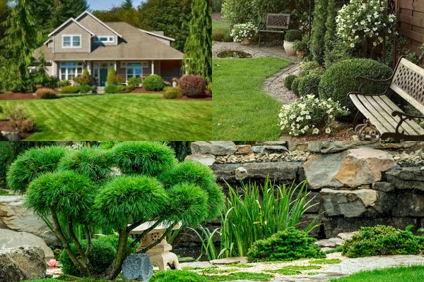 Why Landscape Designing Is Important For You