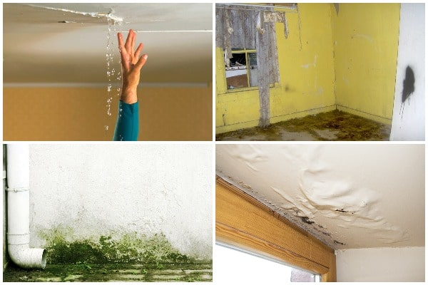 6 Signs of Water Damage Homeowners Should Never Ignore