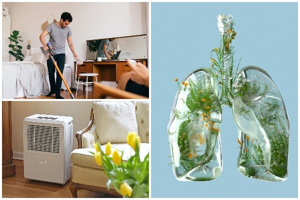 How to make the space cleaner and breathe easier
