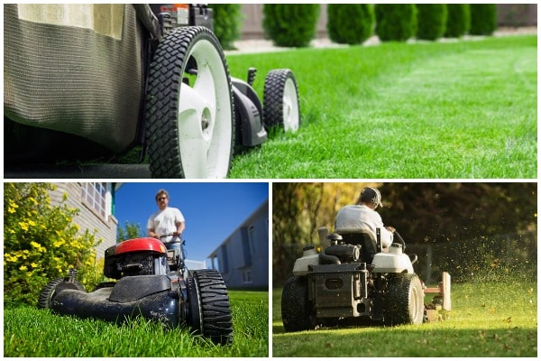 The Incredible Benefits of Hiring Lawn Care Services to Mow Your Grass