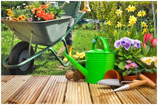 This Is What You Actually Need to See Your Garden Grow